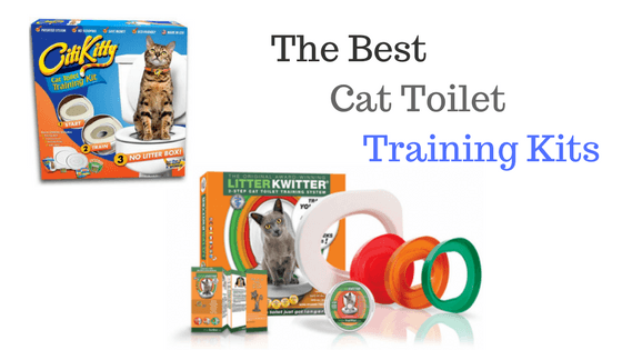 Cat Toilet Training Kits Reviews