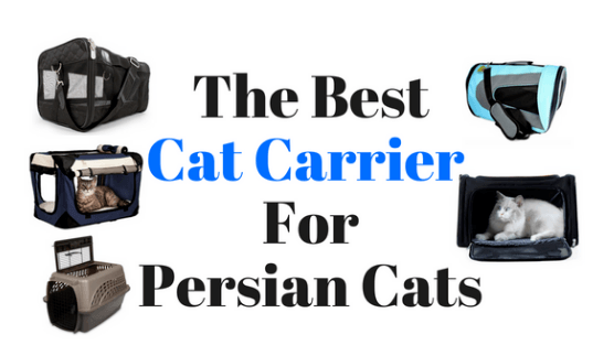 Best-cat-carriers