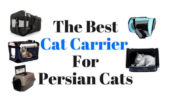Best-cat-carriers
