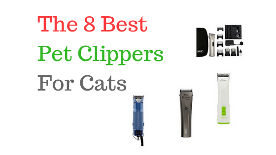 8 Best Pet Clippers For Cats