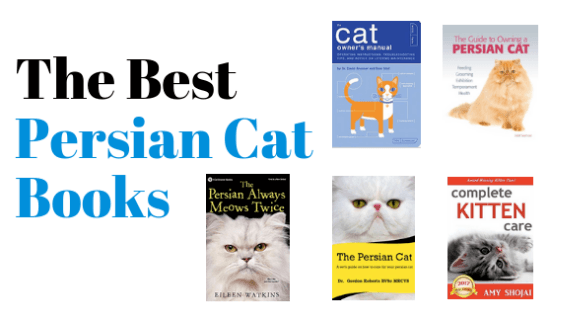 Persian cat book