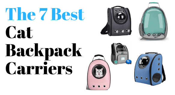 Best Cat Backpack Carriers