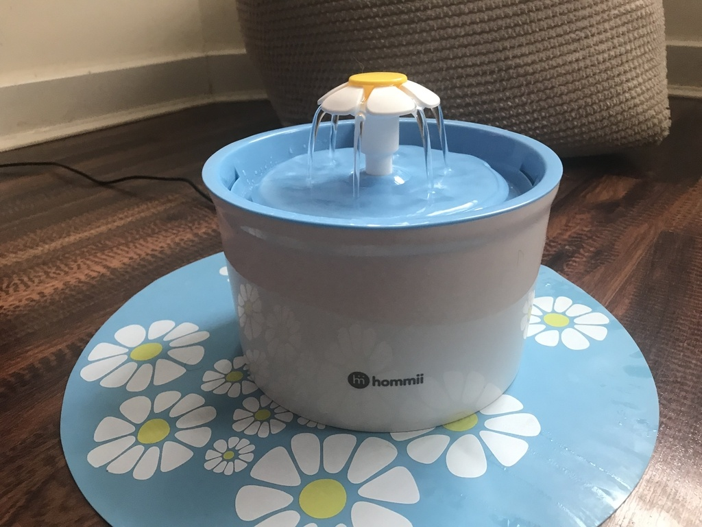 Hommii Pet Water Fountain