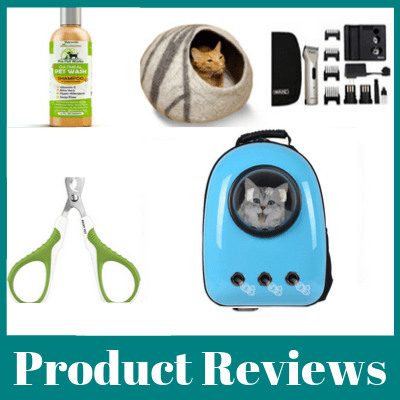 Persian Cat Product Reviews
